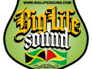 Our Sound System Logo