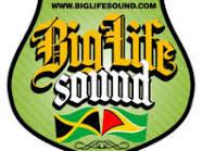Our Sound System Logo