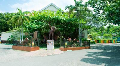 The Bob Marley Museum History and Tours