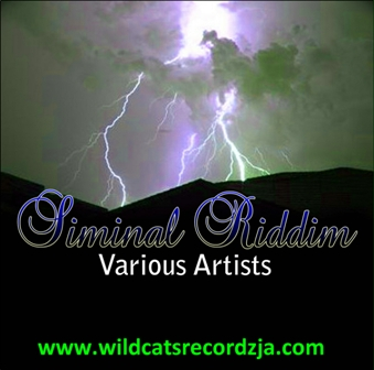 Wild Cats Records