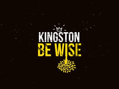 Kingston Be Wise