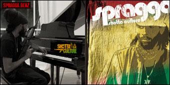 Cover of Shotta Culture