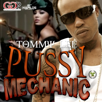 Tommy Lee Mechanic